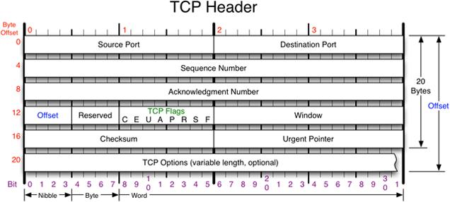 TCP-Header.png